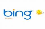 Bing_Translator-1587909259.jpg
