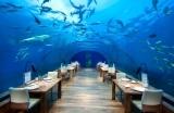 Ithaa-SualtiRestorani-Conrad-Hotel-Maldivler-1554367357