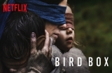 The Bird Box – Kafes (2018)-1566851137.jpg