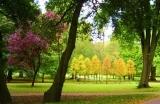 park-1555318548.jpg