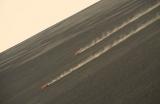 volkan-kayagi-1558597700.jpg