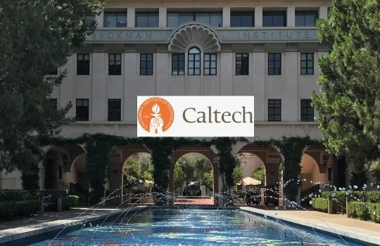california-universitesi-1546871113.jpg