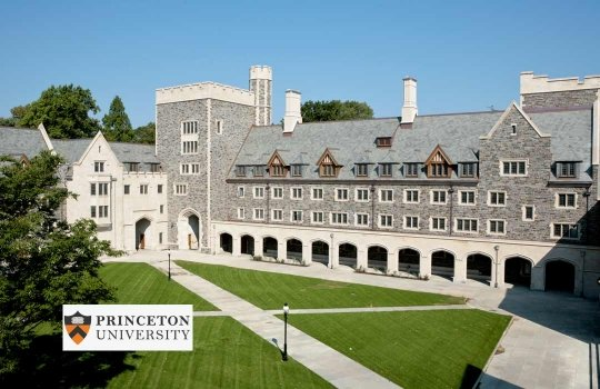 princeton-universitesi-1546871129.jpg